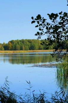 lake-4587902_1920